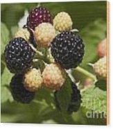 Black Raspberries Wood Print