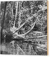 Black Reflected Wood Print