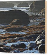 Black Rocks Lichen And Sea  Wood Print