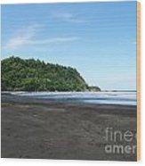 Black Sand Beach In Costa Rica Wood Print