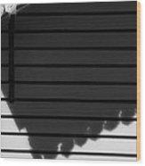 Black Shadow Wood Print
