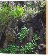 Black Snake Wood Print by Ric Soulen