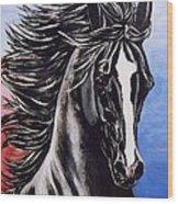 Black Stallion Wood Print