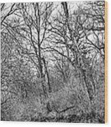 Black Stream Wood Print