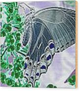 Black Swallowtail Abstract  Wood Print by Kim Galluzzo Wozniak