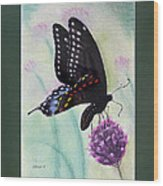 Black Swallowtail Butterfly By George Wood Wood Print