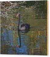 Black Swan 4 Wood Print