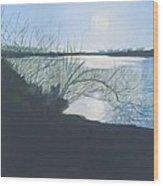 Black Swan Lake Wood Print