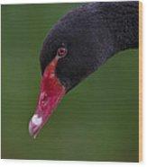 Black Swan Series - 3 Wood Print