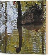 Black Swan Series Iv Wood Print