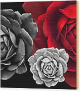 Black White Red Roses Abstract Wood Print