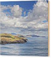 Blackball Head And Bantry Bay Wood Print