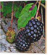 Blackberries Wood Print by Debbie Sikes