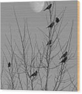 Blackbirds By The Moon Wood Print
