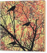 Blackbirds In A Tree Wood Print