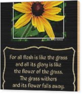 Blackeyed Susan With Bible Quote From 1 Peter Wood Print