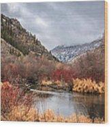 Blacksmith Fork Canyon Wood Print