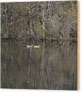 Blackwater Reflections Wood Print