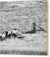 Black And White Of Old Farm Equipment Wood Print