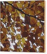 Bladerdek Wood Print