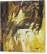 Blanchard Springs Caverns-arkansas Series 02 Wood Print