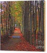 Blanket Of Red Leaves Wood Print