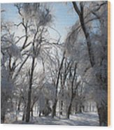 Blanket Of Snow Wood Print by Jeff Swanson