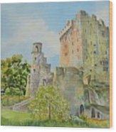 Blarney_castle_1 Wood Print