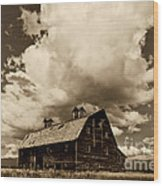 Blasdel Barn Wood Print