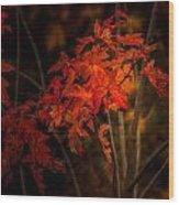 Blaze Of Leaves Wood Print