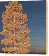 Blazing Wood Print