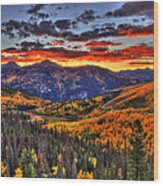 Blazing Fall Wood Print