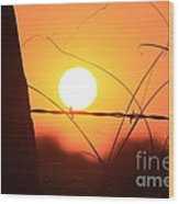 Blazing Orange Fence Line Sunset Wood Print