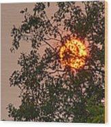 Blazing Sun Hiding Behind A Tree Wood Print
