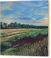 Blazing Sun On Farmland Wood Print