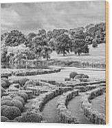 Bleak Topiary  Wood Print