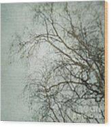 bleakly II Wood Print
