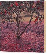 Bleeding Tree Wood Print