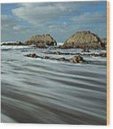 Blegberry Beach Devon Wood Print