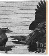 Blind Crow Wood Print