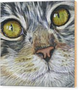 Stunning Cat Painting Wood Print