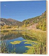 Beauty In Colorado Wood Print