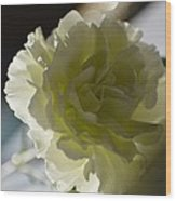 Blissful White Wood Print