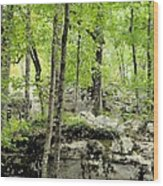Blissfully Peaceful Wood Print