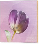 Blissfully Purple Wood Print