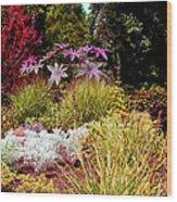 Blithewold Gardens Bristol Rhode Island Wood Print