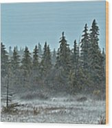 Blizzard Conditions Wood Print