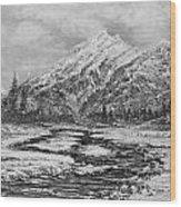 Blizzard Wood Print by Joseph   Ruff