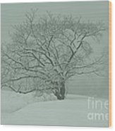 Blizzard Silhouettes Wood Print
