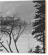 Blizzard Wood Print